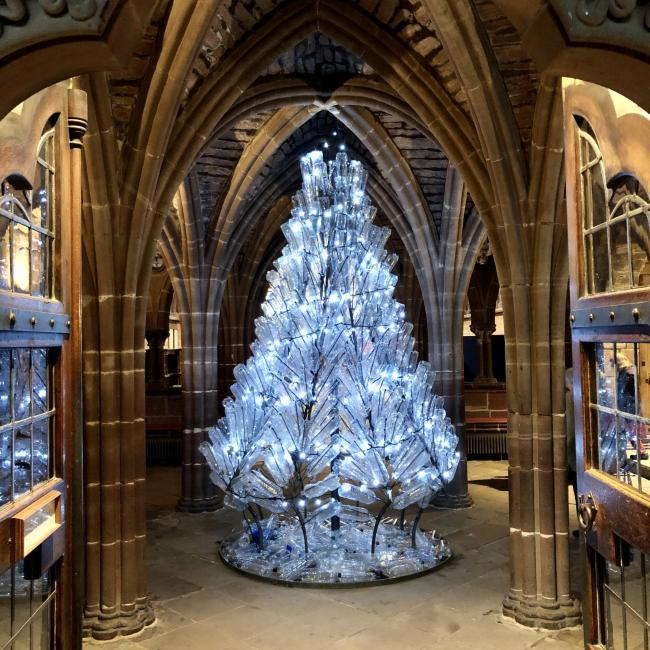 Chester Cathedral Christmas tree by Jacha Potgieter