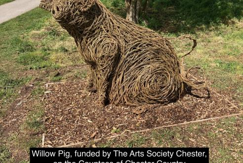 Willow Pig, funded by The Arts Society Chester in Countess of Chester Country Park