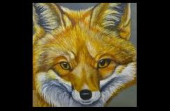 Fox - Linda Da Rios